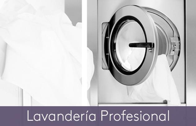 lavanderia-prof